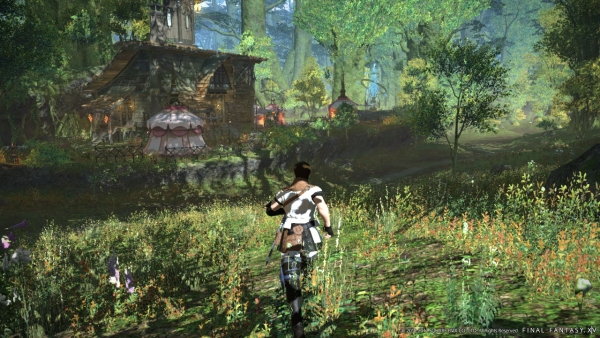 Final Fantasy XIV A realm reborn gráficos