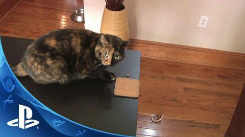 Catlateral Damage é um simulador de gatos (!) para PS4