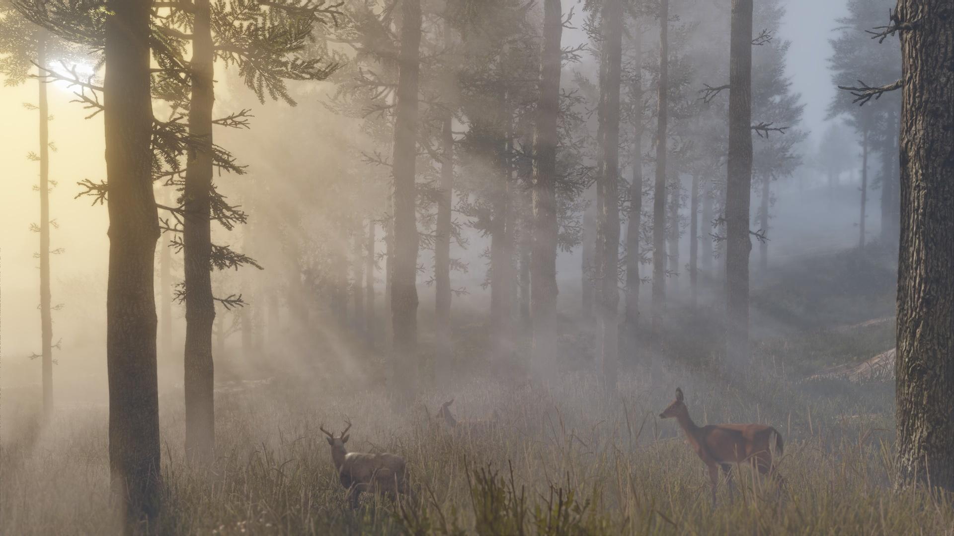Red Dead Redemption 2: novas e belíssimas imagens destacam visual do jogo 6
