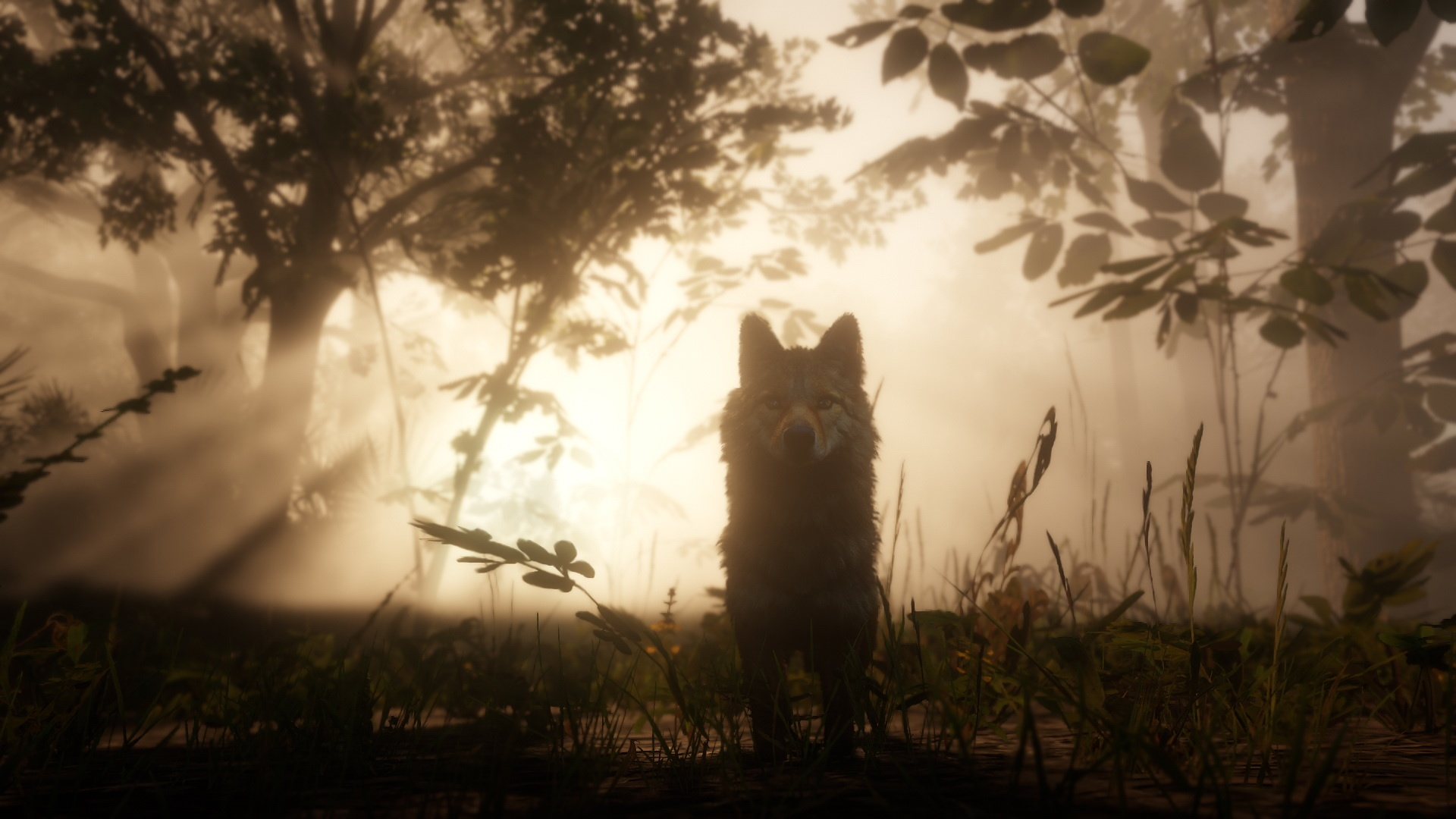Red Dead Redemption 2: novas e belíssimas imagens destacam visual do jogo 8