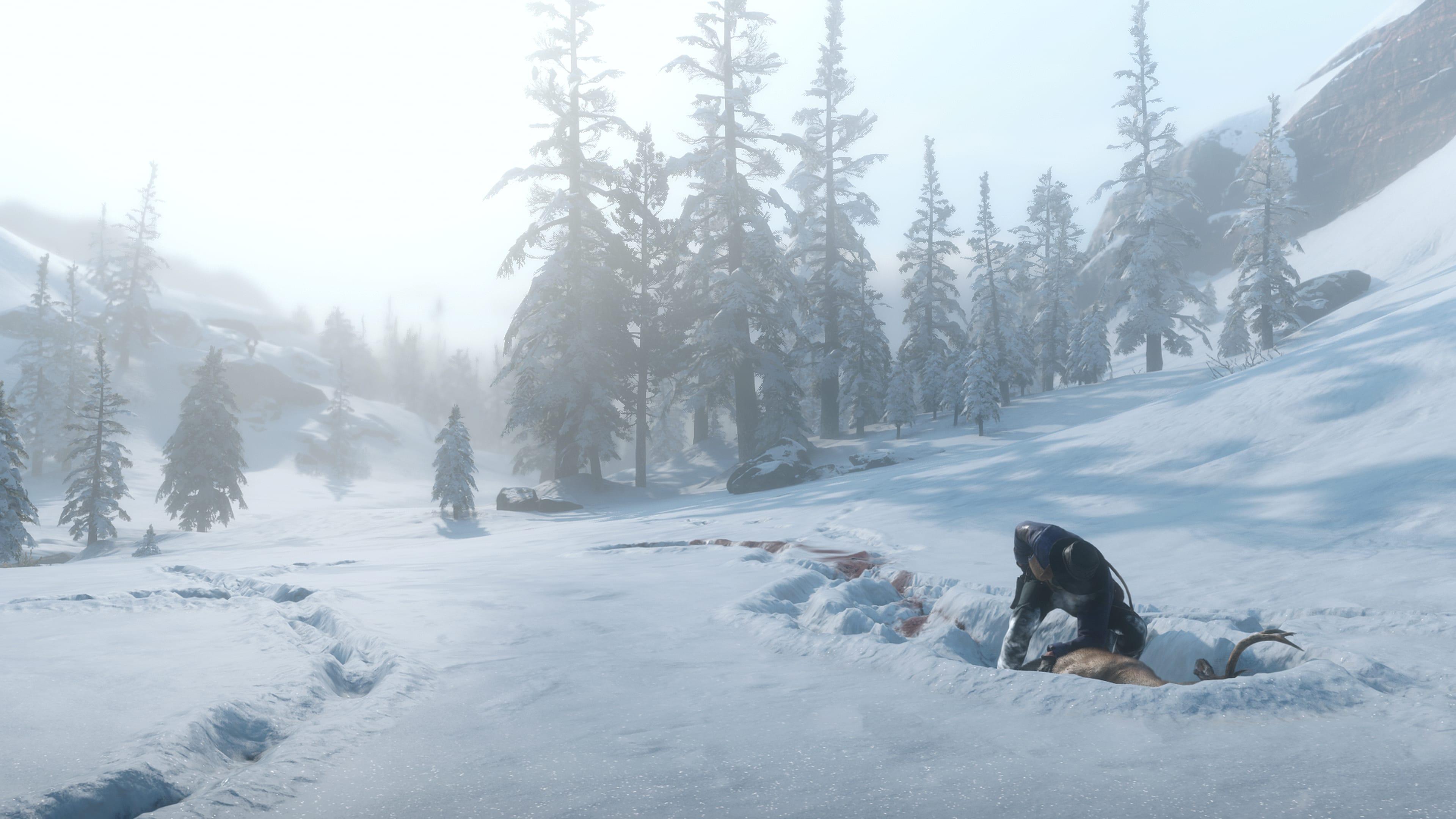 "Rockstar Games destaca ""vida selvagem"" de Red Dead Redemption 2 12"