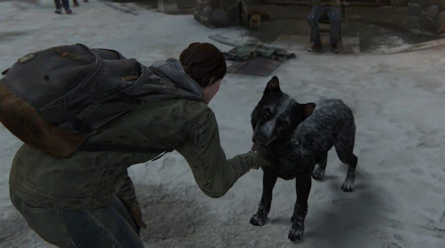 ITI MALIA! Veja os cães que participaram de The Last of Us 2