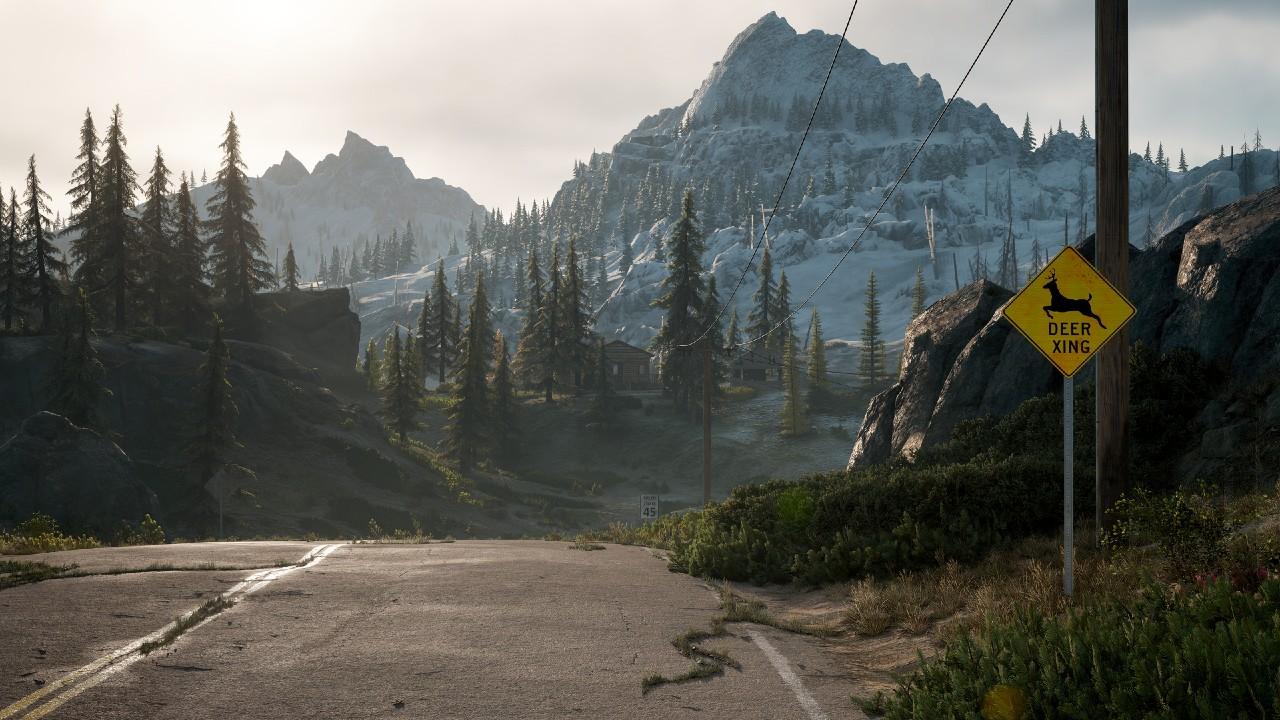 Days Gone PC - estrada