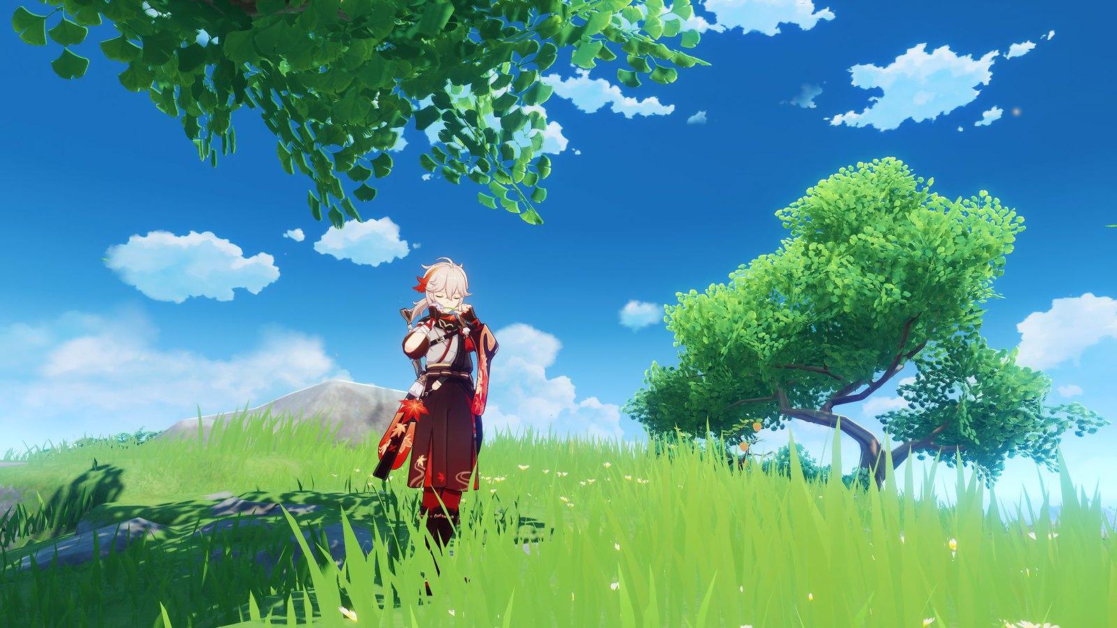 Imagem do update 1.6 de Genshin Impact com o novo personagem jogável em um campo