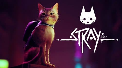 Uma fofura! Stray é adiado para 2022, mas tem gameplay divulgado