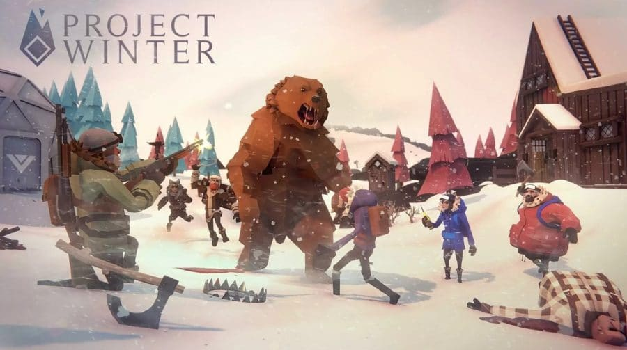 Project Winter, o